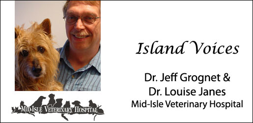 Dr. Jeff Grognet and Dr. Louise Janes, Mid-Isle Veterinary Clinic